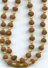 Rudraksha strung in gold